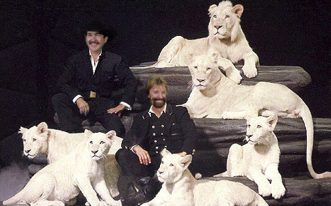 Brooks and Dunn as Siegfried & Roy (Click for Original)
